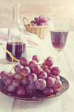 Grapes and grape wine Stock Photos