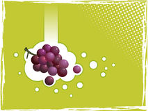Grapes on green background. A vectored illustration of a cluster of ripe grapes appearing to fall through a green background with an abstract grunge border Royalty Free Stock Photo