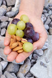 Grapes, green and blue, with almonds Royalty Free Stock Photography