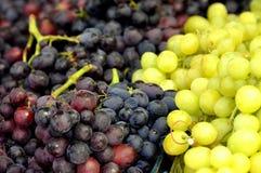 Grapes. Ha-Carmel market,Tel Aviv,Israel Stock Images