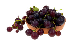 Grapes Home Grown in Dish Stock Images