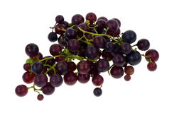 Grapes Home Grown on White Royalty Free Stock Photography