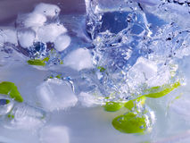 Grapes and ice Royalty Free Stock Images