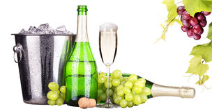 Grapes, ice bucket  with champagne isolated Royalty Free Stock Photography