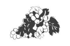 Grapes icon Royalty Free Stock Image
