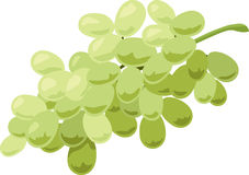 Grapes icon Royalty Free Stock Images