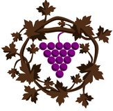 Grapes illustration Royalty Free Stock Photography