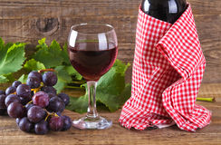 Grapes. Stock Image