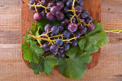 Grapes. Stock Images