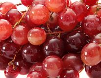 Grapes, isolated. Royalty Free Stock Photo