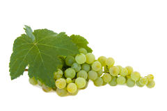 Grapes isolated. On white background Royalty Free Stock Photos