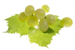 Grapes isolated Royalty Free Stock Images