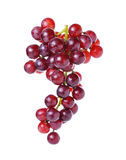 Grapes isolated on over white background Royalty Free Stock Image