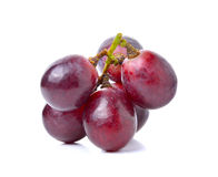 Grapes isolated on over white background Stock Photography