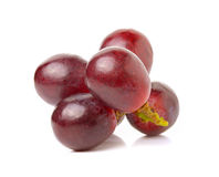 Grapes isolated on over white background Royalty Free Stock Photography