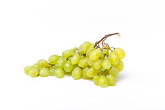 Grapes isolated in studio. On white background Stock Image
