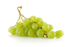 Grapes isolated on white. Background Stock Photography