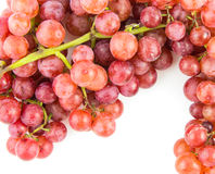 Grapes isolated Royalty Free Stock Photo