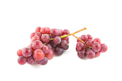 Grapes isolated Stock Photography