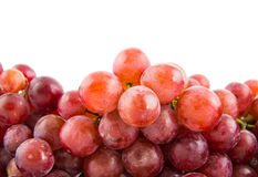 Grapes isolated Stock Images