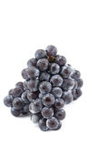 Grapes in Japan. Grapes fresh from the garden in Japan Stock Photography