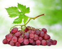 Grapes with leaf. On green background Royalty Free Stock Photography