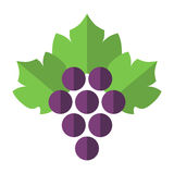 Grapes with leaves isolated. Purple grapes with green leaves isolated on white background. Flat design. Vector illustration. EPS 8, no transparency Royalty Free Stock Photos