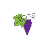 Grapes line icon, healthy fruit, vector graphic. Grapes solid line icon, healthy fruit, vector graphics, a colorful linear pattern on a white background, eps 10 Royalty Free Stock Photography