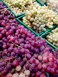 Grapes in the market Stock Image