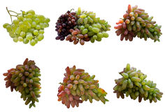 Grapes meeting. Autumn background bouquet by cluster cu culinary delicious flowers stock photography