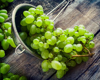 Grapes in metal colander on wooden rustic table Stock Image