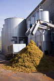 Grapes mill Stock Photography