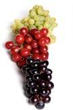 Grapes mix Royalty Free Stock Photo