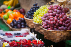 Grapes in the old town of Siena Stock Photography