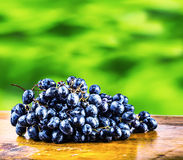 Grapes on a old wooden table. Bunch of blue grapes lying on a wooden board with a garden green Stock Photos