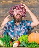 Grapes from own garden. Farming concept. Man hold grapes wooden background. Farmer bearded guy with homegrown harvest stock photography