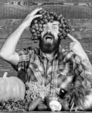 Grapes from own garden. Farming concept. Man hold grapes wooden background. Farmer bearded guy with homegrown harvest. Grapes put on head. Farmer proud of royalty free stock photos