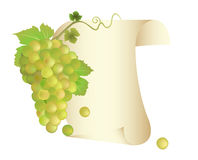 Grapes and paper scroll Royalty Free Stock Images