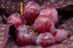 Grapes on a piece of bordeaux cloth. Shot to some grapes on a piece of bordeaux cloth royalty free stock image