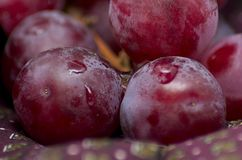 Grapes on a piece of bordeaux cloth. Shot to some grapes on a piece of bordeaux cloth royalty free stock photos