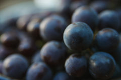 Grapes in plate outdoor, close up. royalty free stock photo