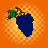 Grapes pop art vector illustration Stock Images