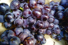 Grapes. Purple grapes, very fresh, put in the fruit shop for sale Stock Photography
