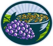 Grapes Raisins Bowl Oval Woodcut Royalty Free Stock Photography