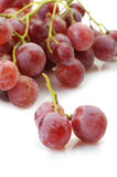 Grapes red Stock Photography