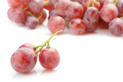 Grapes red Royalty Free Stock Photography