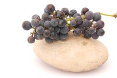 grapes red Fotografering för Bildbyråer