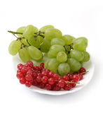 Grapes and red currants Stock Photography