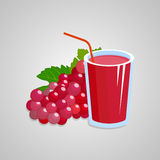 Grapes red juice illustration Royalty Free Stock Photo