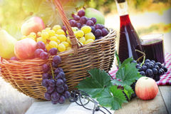 Grapes and red wine Stock Image